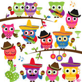 Cinco de Mayo Themed Collection of Owls and Branches — Stock Vector