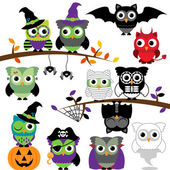 Vector Collection of Spooky Halloween Owls — Stock Vector