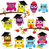 Vector Collection of School or Graduation Themed Owls — Vettoriale Stock