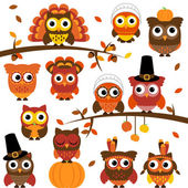 Thanksgiving and Autumn Themed Vector Owl Collection with Branches — Stock Vector