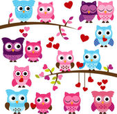 Vector Collection of Valentine's Day or Love Themed Owls — Stock Vector
