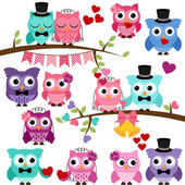 Vector Set of Wedding Themed Owls and Branches — 图库矢量图片