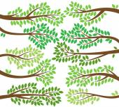 Vector Collection of Leafy Tree Branch Silhouettes — Stok Vektör