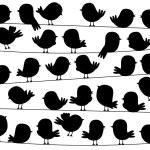 Cute Cartoon Style Bird Silhouettes in Vector Format — Stock Vector #69253487