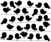 Cute Cartoon Style Bird Silhouettes in Vector Format — Stock Vector