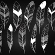 Vector Set of Chalkboard Feathers and Feather Silhouettes — Stock Vector #77002181