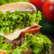 Cheeseburger with lettuce, onions and tomato in a sesame bun — Stock Photo #52350951