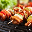 Grilling shashlik on barbecue grill — Stock Photo #52746575