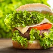 Cheeseburger with lettuce, onions and tomato in a sesame bun — Stock Photo #52765865