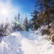 Snowy view in Tatra Mountains — Stock Photo #55104769