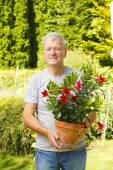Man holding pot of flower — Stock Photo
