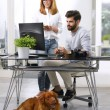 Art director working at pet-friendly workplace — Stock Photo #76591635
