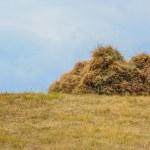 Haystack hay straw — Stock Photo #64599653