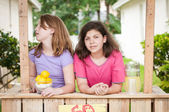 Two bored young girls selling lemonade — Stock Photo