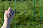 Aged woman's hand on a fence — Stock Photo