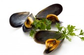 Mussels isolated — Stock Photo