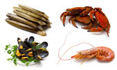 Seafood isolated — Stock Photo