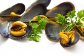 Tasty mussels isolated — Photo