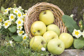 Wicker basket with green apples — Stock Photo