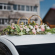 Rings on a car roof 1104. — Stock Photo #55663421