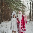 Granddaughter Snow Maiden and Grandfather Frost 1470. — Stock Photo #60667111