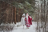 Father Frost and Snegurochka go on the wood 1467. — Stock Photo