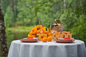 Table in the wood 1966. — Stock Photo