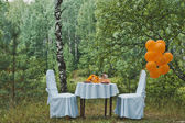 Table in the wood 1965. — Fotografia Stock