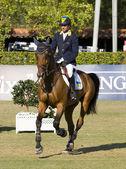 Horse jumping - Cassio Rivetti — Stock Photo