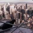Birds in New York city — Stock Video #59975123