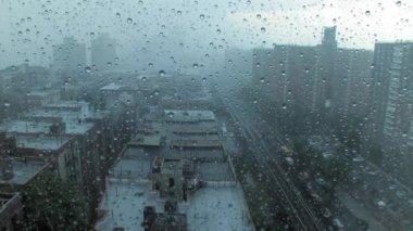 Rainy day in New York city — Stock Video