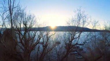 Park trees lake view. — Stock Video