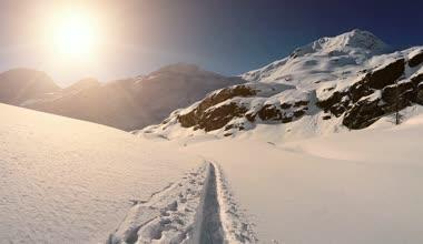Snow winter landscape — Stock Video