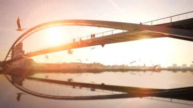 Water reflection of bridge. — Stock Video
