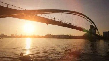 Bridge at sunset. — Stock Video