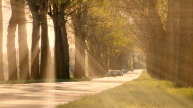 Street road way. — Stock Video