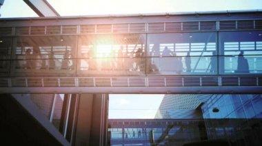 Modern glass hallway. — Stock Video