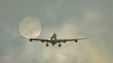 Plane arriving to airport — Стоковое видео