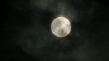 Full moon at night sky — Stock Video