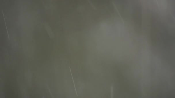 Rain drops outdoors — Vidéo