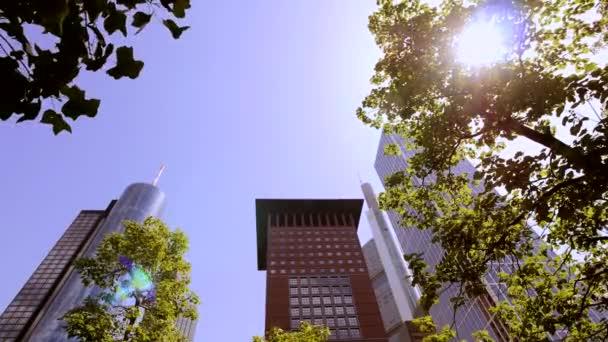 View of skyscrapers from park — Vídeo de stock