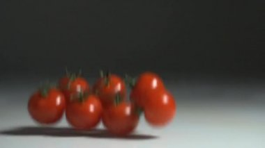 Fresh tomatoes splashing in water — Stock Video