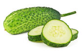 Young cucumber — Stock Photo