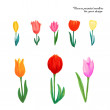 Flowers painted markers — Stock Vector #78518138