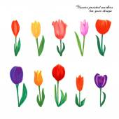 Flowers painted markers — Stock Vector