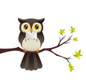 Owl With Message — Stockvector