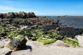 Viana do Castelo Beach — Stock Photo