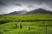 Beautiful landscape of Icelandic field — Stock Photo