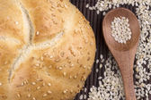 Small round sesame bread  — Stockfoto