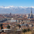 Spectacular view of Turin city with many tourist attractions, as Mole Antonelliana and St John's church, where is the holy shroud — Stock Photo #66900815